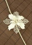 Vánoční květina-bílá