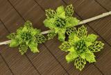 Vánoční květina-zelená, 3ks