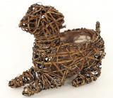 Proutěný obal-pes