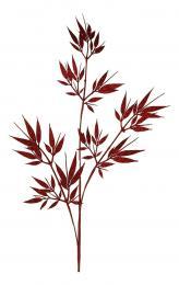 Vánoční větev-červená - zvětšit obrázek