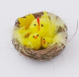 Kuřátka v hnízdě - zvětšit obrázek
