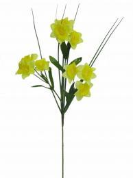 Květ-mininarcis - zvětšit obrázek