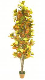 Podzim kvetoucí - zvětšit obrázek