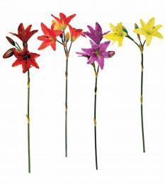 Květ-lilie - zvětšit obrázek