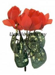 Kytice-brambořík červená - zvětšit obrázek