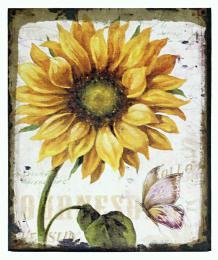 Obraz na plátně-slunečnice - zvětšit obrázek