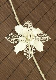 Vánoční květina-bílá - zvětšit obrázek