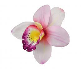 Orchidej, 12ks - zvětšit obrázek