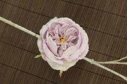 Vánoční růže-květ - zvětšit obrázek